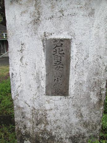MG_3196.jpg